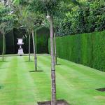 Longleat garden detail 2_1