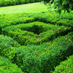Longleat labyrinth detail_1
