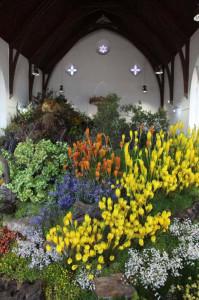 Die Blomkerk op Clanwilliam tydens die Clanwilliam Veldblommeskou